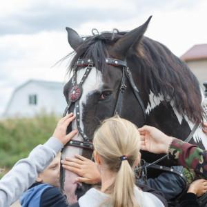 20160831 049 Экскурсия в Сибирский Казачий центр конного искусства Атаман Омск IMG_1433