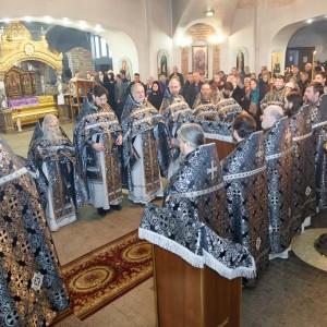 180314 016 Визит в Омск схиархимандрита Илия митр. Владимир (Иким) IMG_5902