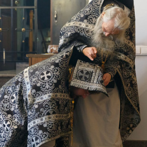180314 030 Визит в Омск схиархимандрита Илия митр. Владимир (Иким) IMG_5967