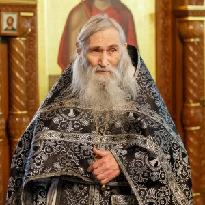 180314 043 Визит в Омск схиархимандрита Илия митр. Владимир (Иким) IMG_6038