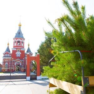 2021.05.23 высадка деревьев на приходе Николо-Игнатьевского храма(4) - копия