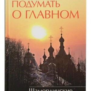 Встречи_с_Николаевым_2