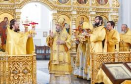 Митрополит Владимир возглавил Литургию в Неделю Всех святых