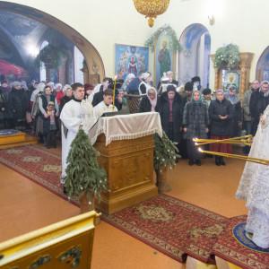 20170122 031 Литургия Никольский мужской монастырь Омск Владимир (Иким) IMG_3456