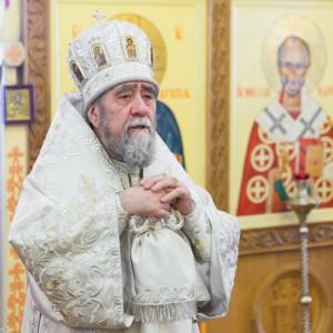 20170122 054 Литургия Никольский мужской монастырь Омск Владимир (Иким) IMG_3549