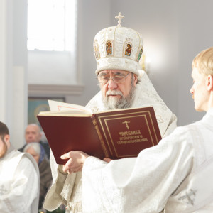 180119 032 Крещение Господа Собор Успения Омск митр. Владимир (Иким) IMG_9217