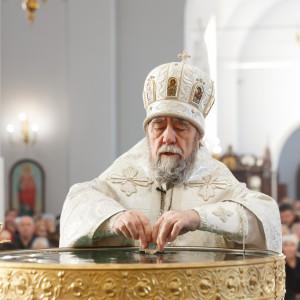 180119 039 Крещение Господа Собор Успения Омск митр. Владимир (Иким) IMG_9253