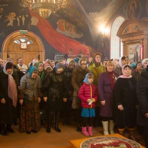 180412 018 Литургия Никольский монастырь Большекулачье митр. Владимир (Иким) IMG_2838