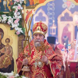 180412 020 Литургия Никольский монастырь Большекулачье митр. Владимир (Иким) IMG_2849