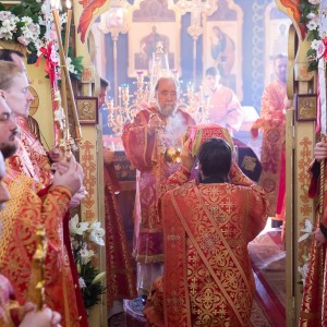 180412 026 Литургия Никольский монастырь Большекулачье митр. Владимир (Иким) IMG_2872