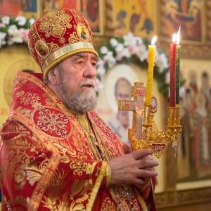 180412 056 Литургия Никольский монастырь Большекулачье митр. Владимир (Иким) IMG_2988