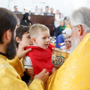 180728 037 День крещения Руси Собор Успения Омск митр. Владимир (Иким) IMG_7674