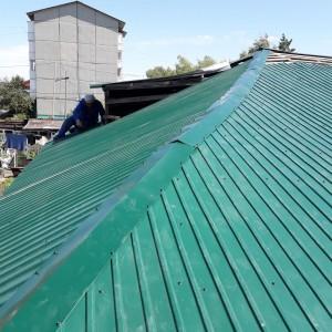 крыша (6)